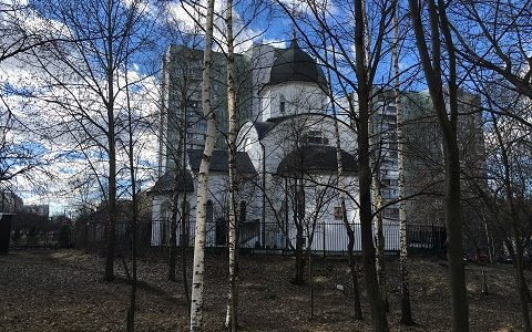II открытый кубок Святого Благоверного князя Дмитрия Донского по русскому жиму и армрестлингу